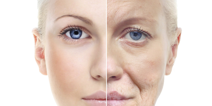 DHEA-hormone-vieillissement-menopause-anti-age-jeunesse